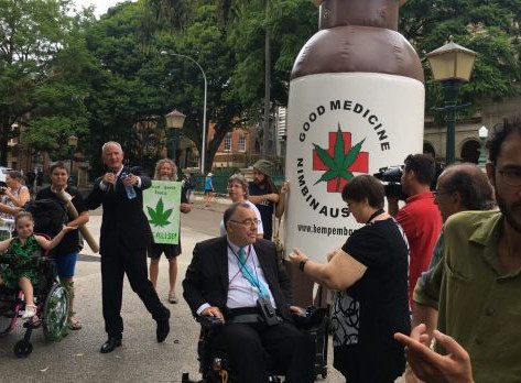 Medical cannabis 'needs real law behind it': One Nation MP