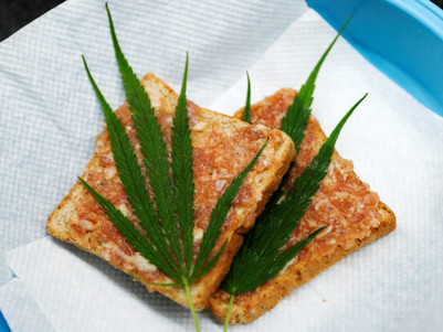 Thailand serves up cannabis cuisine to happy customers