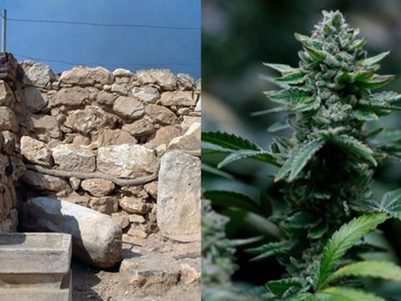 'Cannabis burned during worship' by ancient Israelites - study