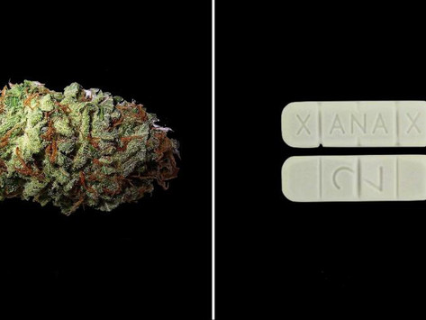 Cannabis Could Literally Replace These 5 Prescription Drugs