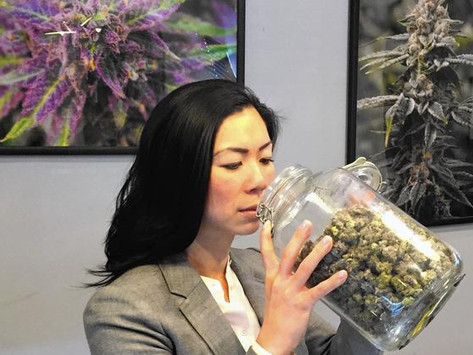 Limited by U.S. banking rules, pot businesses rely on bags of cash and armed guards