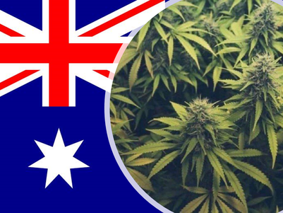 Aussies don't want laws overturned: survey