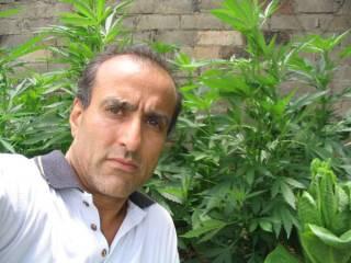 Medicinal cannabis advocate Andrew Katelaris.