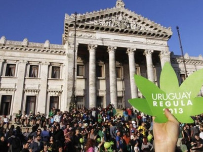 Uruguay becomes first nation to legalise cannabis trade