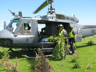 NZ police axe nationwide helicopter cannabis operations