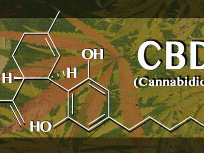 Researching Cannabis for Therapeutic Purposes: The Potential Promise of Cannabidiol (CBD)