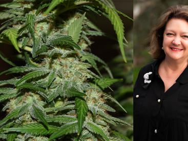 Mining billionaire Gina Rinehart goes green with $15m medical cannabis play