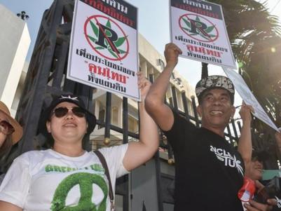 Thailand approves medicinal cannabis