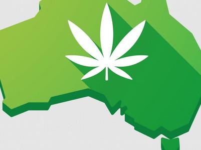Govt urged to PBS list cannabis