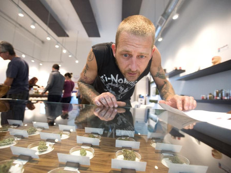 Marijuana Dispensaries Are Keeping Cannabis Out Of The Hands Of Minors In Oregon