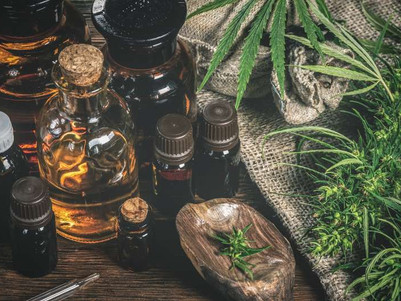 Cannabis extracts may help to prevent coronavirus, preliminary study suggests