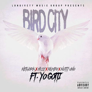 Bird city cover .jpg