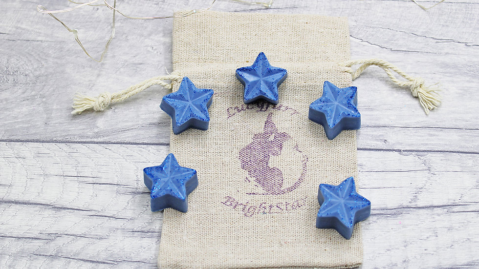 Blueberry and Vanilla Candle Melts