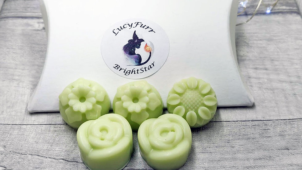Lemongrass and Ginger Candle Melts