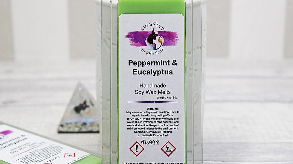 Peppermint and Eucalyptus Wax Melt Snap Bar
