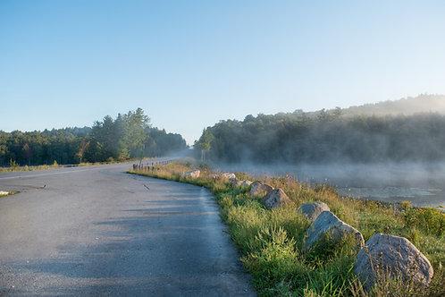 Foggy Springs