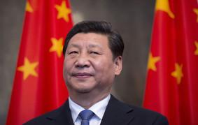 Xi Jinping's Brave New World