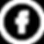 FBsm2_Icon_White_Electric Boogaloo Tatto