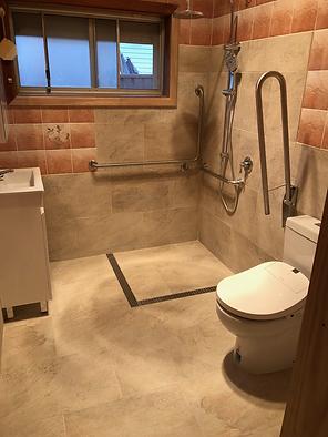 bathroom modification.png