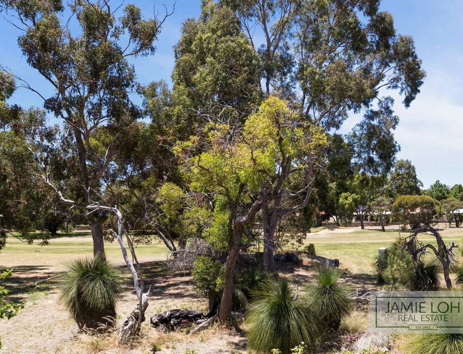 WEB 4 Woodlands Way Jandakot 29.jpg