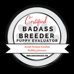 BadAssEvaluator_Trans_Red