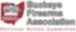 BFA-PAC-Logo-for-websites (1).png