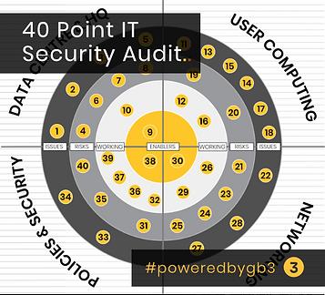 40 point audit website image.png