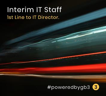 Interim IT staff website image.png