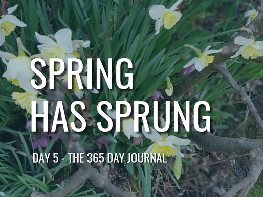 Day 5 – Spring has Sprung!
