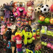 The Toy Wall!