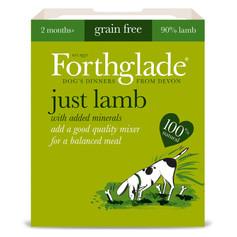 Forthglade Just Lamb