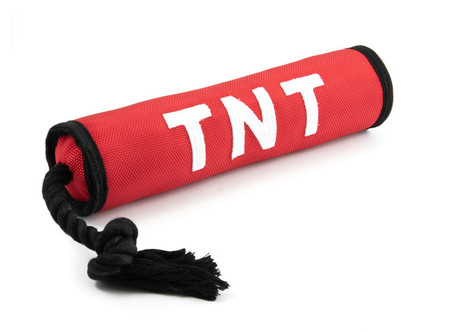 Ancol TNT Dog Toy