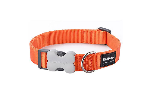 Red Dingo Classic Orange Dog Collar
