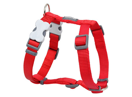 Red Dingo Classic Harnesses