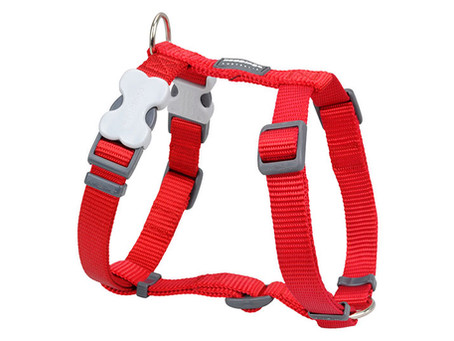 Red Dingo Classic Harnesses