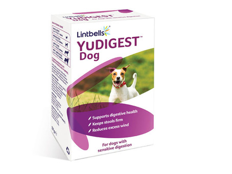Yudigest Probiotics for Dogs
