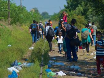Trappola per migranti