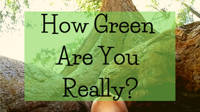 """How """"Green"""" Are You Really?"""