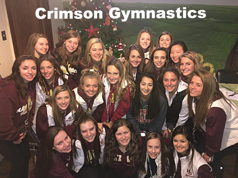showing 1st image of Compulsory State Meet 2018 Minnesota About-us | Maple Grove | Crimson Gymnastics | Coaches Bio