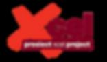 Logo Xcel project.png