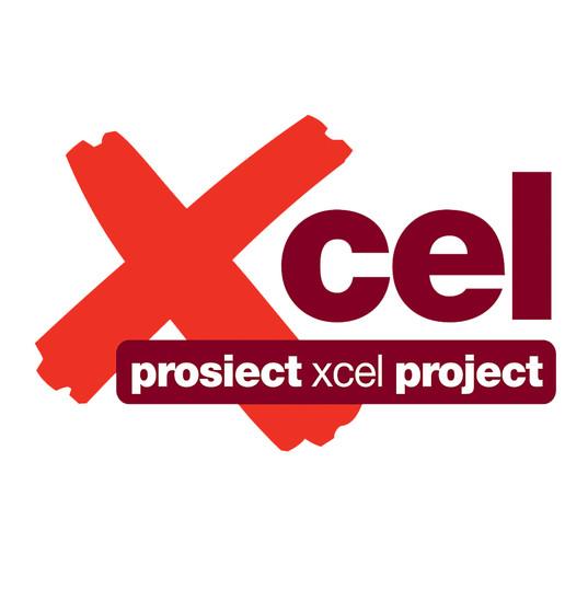 Xcel project logo.jpg
