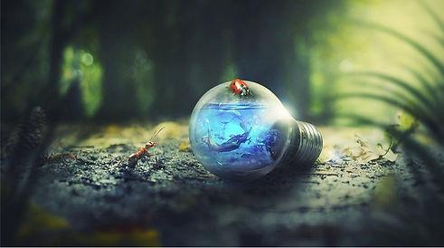 Lightbulb7.jpg