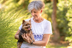 Nanas pet sitter playing with a Yorkie.j