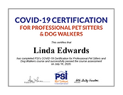 COVID certified pet sitter.png