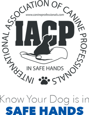 Holy City Canine - IACP certified Serving Charleston, Myrtle Beach, Summerville, Savannah, hilton Head, and beyond