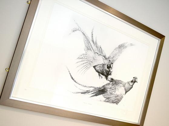 Pheasant-7.jpg