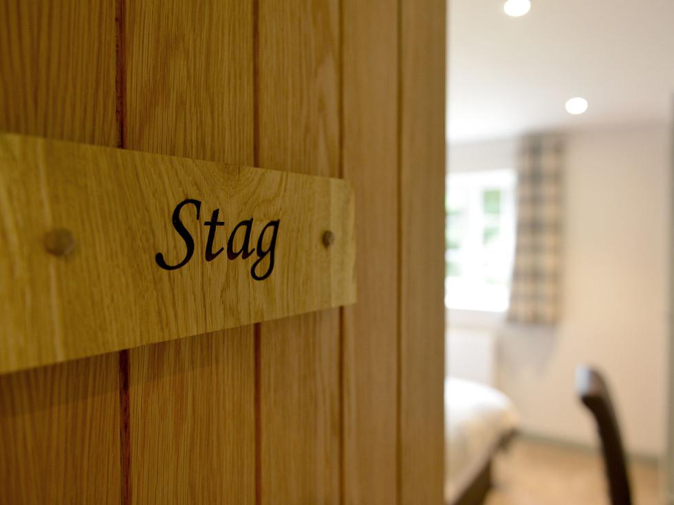 Stag-1.jpg