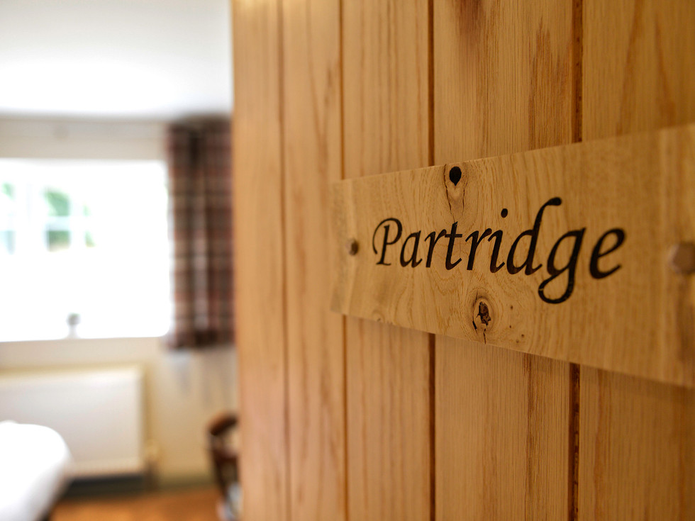 Partridge-1.jpg