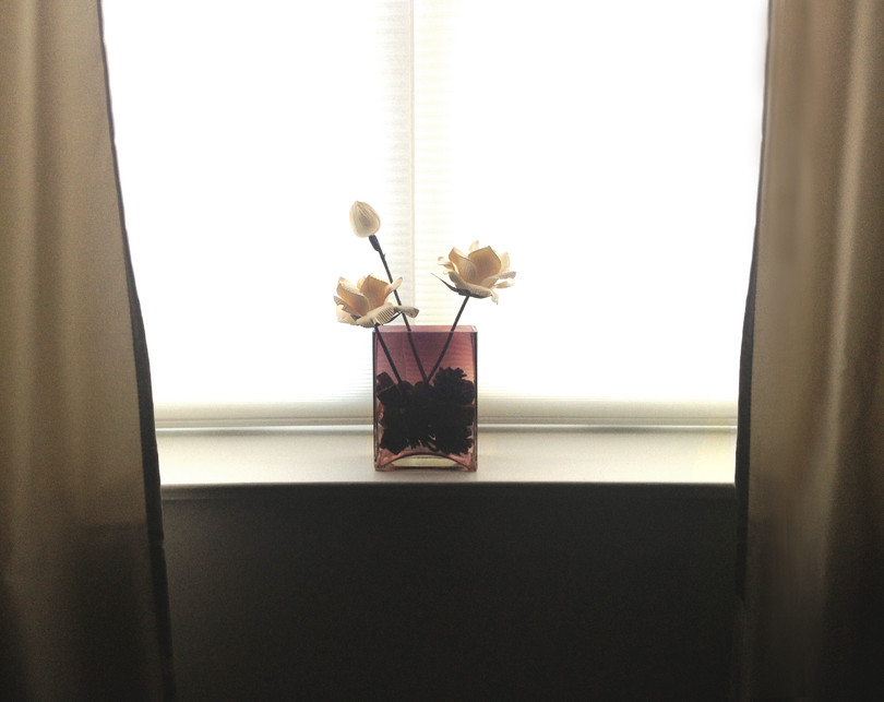 APT 2 Window Still Life.jpg
