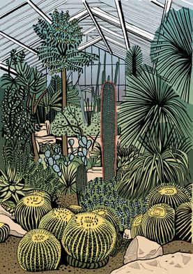 Kew Gardens Cacti